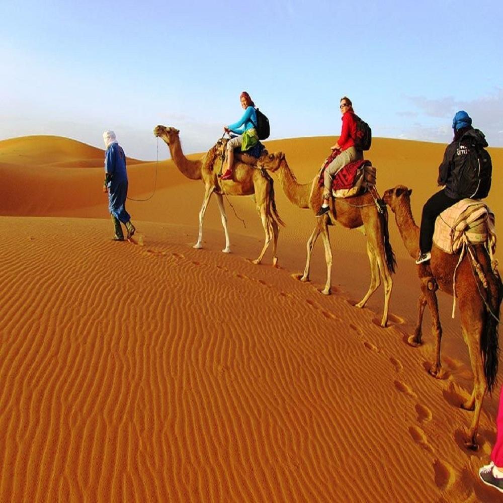 Zagora Desert in Morocco